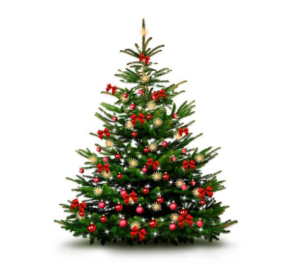 Julgran - bästa julgranen - plastgran - julgran plast